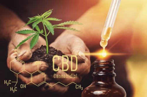 Oleje CBD a szybka regeneracja